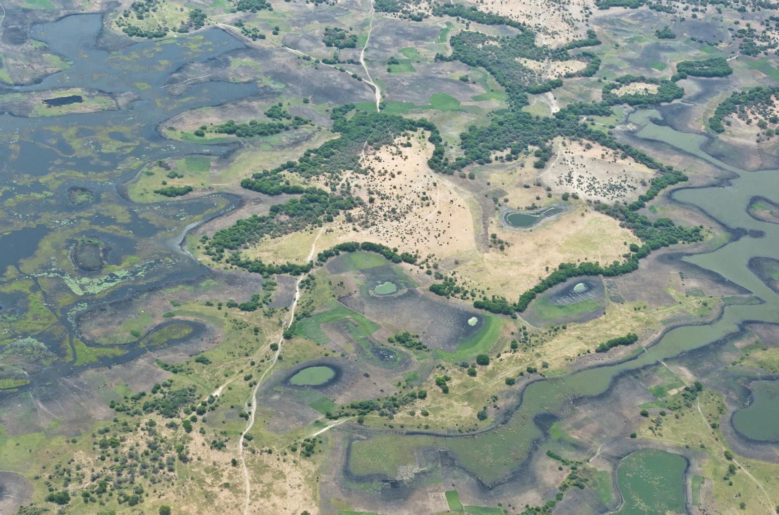 Lac Tchad : quand l'or bleu devient source de tension